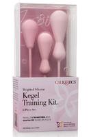 Набор вагинальных кегель из силикона из 3 штук разного размера INSPIRE WGHT SIL KEGL TRAIN KT